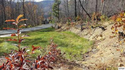 Gatlinburg Residential Lots & Land For Sale: 960 Street Of Dreams