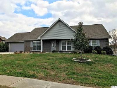 Maryville Single Family Home For Sale: 2624 Brantley Park Blvd.