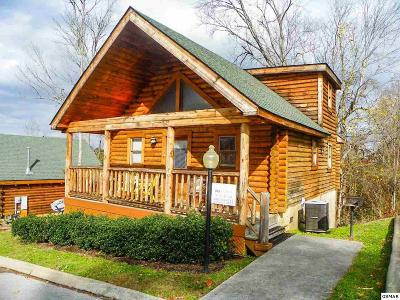 Pigeon Forge Single Family Home For Sale: 219 Moose Ridge Way
