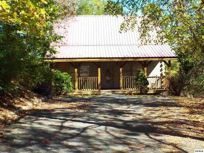 Sevierville Single Family Home For Sale: 864 Dudley Drive