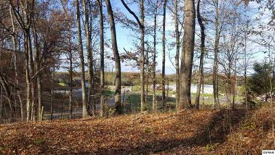 Sevierville TN Residential Lots & Land For Sale: $130,000