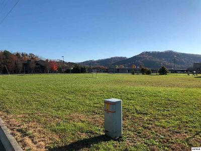 Pigeon Forge Residential Lots & Land For Sale: Lot 6 Sand Pike Blvd