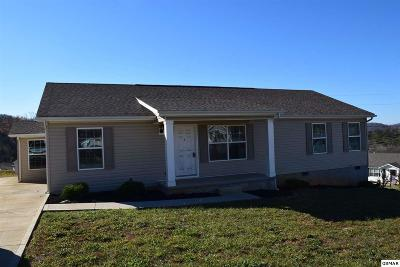 Dandridge Single Family Home For Sale: 1117 Case View Rd