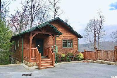Gatlinburg Single Family Home For Sale: 922 Park Vista Way