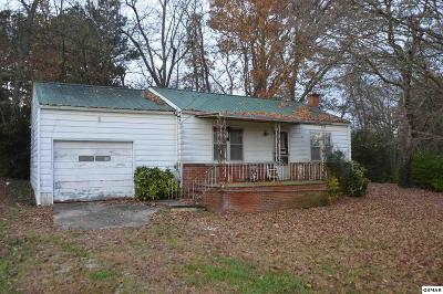 Sevier County Single Family Home For Sale: 11213 Chapman Hwy