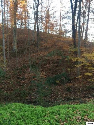 Sevierville Residential Lots & Land For Sale: Lot 38 Big River Overlook Drive