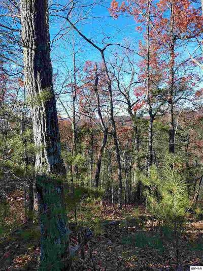 Sevierville Residential Lots & Land For Sale: Lot 262 Ski View Ln