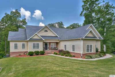 Sevierville Single Family Home For Sale: 1239 Shular Hollow Way