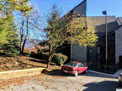 Gatlinburg Condo/Townhouse For Sale: 1155 Upper Alpine Way