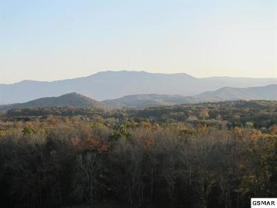 Sevierville TN Residential Lots & Land For Sale: $383,300