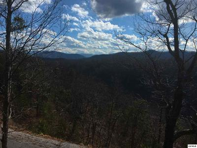Sevierville Residential Lots & Land For Sale: Lot 139e Settlers View Lane