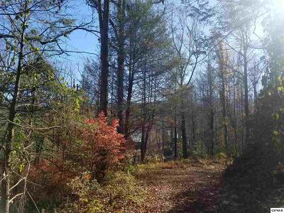 Gatlinburg TN Residential Lots & Land For Sale: $80,000