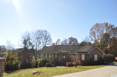 Sevierville Single Family Home For Sale: 315 Sterling Ct