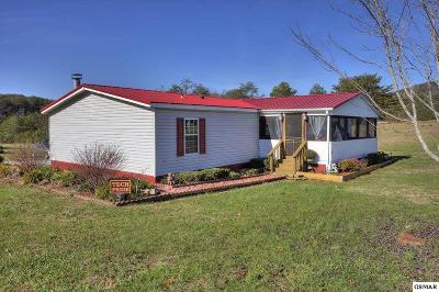 Dandridge Single Family Home For Sale: 915 Ohara Dr