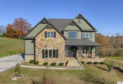 Sevierville Single Family Home For Sale: 1617 Regency Court