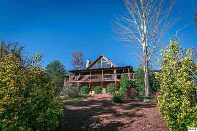 Sevierville Single Family Home For Sale: 1624 Bluff Ridge Rd