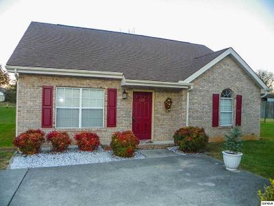Pigeon Forge Single Family Home For Sale: 413 Dorminey Drive