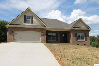 Sevierville Single Family Home For Sale: Lot 18 Bryson Ct