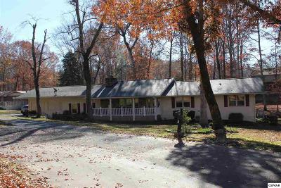 Sevierville Single Family Home For Sale: 224 Hemlock Court