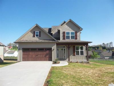 Sevierville Single Family Home For Sale: 2657 Vista Meadows Lane