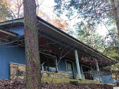 Pigeon Forge Single Family Home For Sale: 3303 Progress Hill