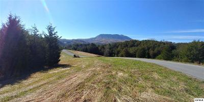 Sevierville Residential Lots & Land For Sale: Lot 12r Willow Wood