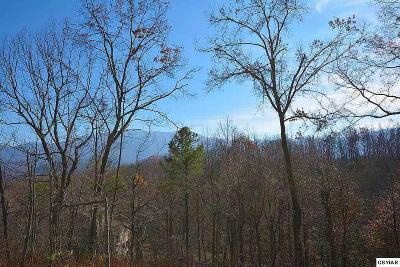Gatlinburg Residential Lots & Land For Sale: 1045 Wiley Oakley Drive