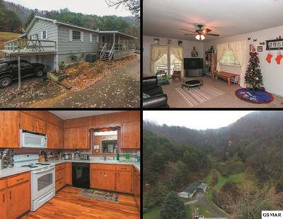 Sevierville Single Family Home For Sale: 3083 Nuns Cove Road