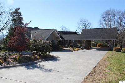 Sevierville Single Family Home For Sale: 422 Alderman Rd