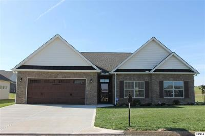 Sevierville Single Family Home For Sale: 2165 Frewin Ct