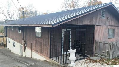 Dandridge Single Family Home For Sale: 1929 Range Rd