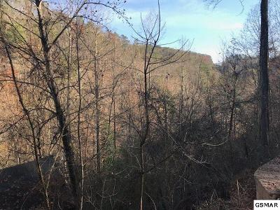 Pigeon Forge Residential Lots & Land For Sale: Sugar Sugar Mountain Way