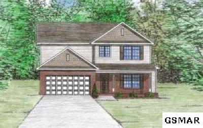 Sevierville Single Family Home For Sale: 3043 Crosswinds Lane