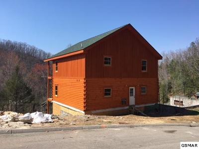 Sevier County Single Family Home For Sale: 3230 Smoky Ridge Way