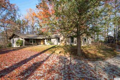 Sevierville Single Family Home For Sale: 1051 Topside Dr