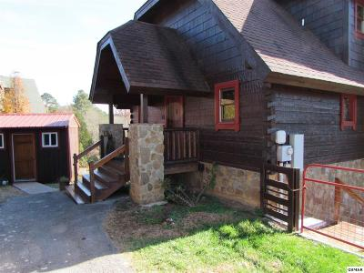 Sevierville Single Family Home For Sale: 615 Rainbow Road #1