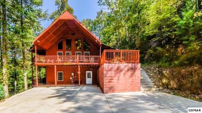 Sevierville Single Family Home For Sale: 4040 Hickory Hollow Way