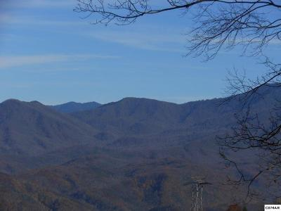 Gatlinburg Residential Lots & Land For Sale: Ski View Drive