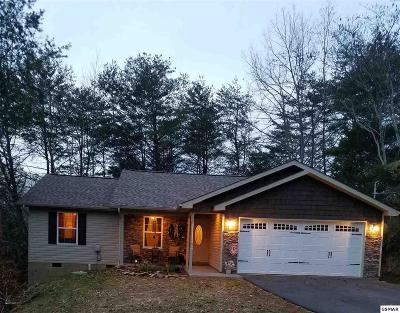 Sevierville Single Family Home For Sale: 1114 Tramel Rd