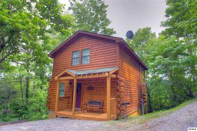 Gatlinburg Single Family Home For Sale: 912 Boyd Blvd