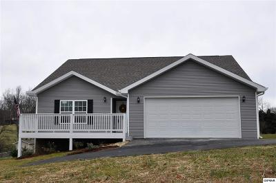 Sevier County Single Family Home For Sale: 1160 South Fork Drive