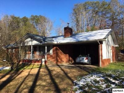 Single Family Home For Sale: 813 Gnatty Branch Rd.