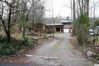 Gatlinburg Single Family Home For Sale: 4524 E Scenic Dr