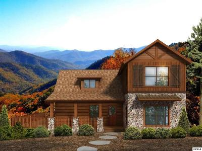 Sevier County Single Family Home For Sale: 1909 Little Cove Road