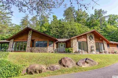 Gatlinburg Single Family Home For Sale: 202 Golf Creek Road