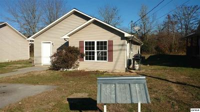 Sevierville Single Family Home For Sale: 156 Redbud