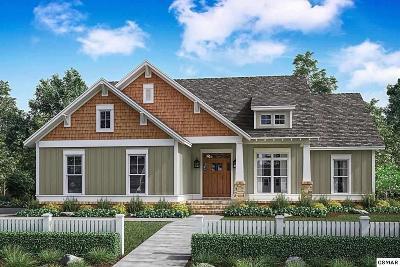 Sevierville Single Family Home For Sale: 559 Elizabeth Lane