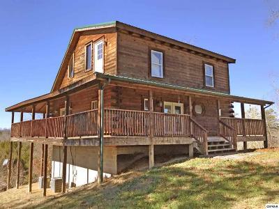 Dandridge Single Family Home For Sale: 2363 Jim Henry Road
