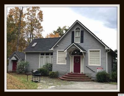 Sevierville Single Family Home For Sale: 3638 Locust Ridge Rd