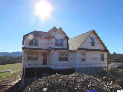 Sevierville Single Family Home For Sale: Legend View Ct